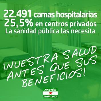 Nación Andaluza ante la declaración del estado de alarma ¡Nuestra salud antes que sus beneficios! – La otra Andalucía