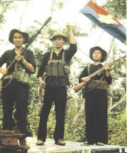 Vietcong - EcuRed