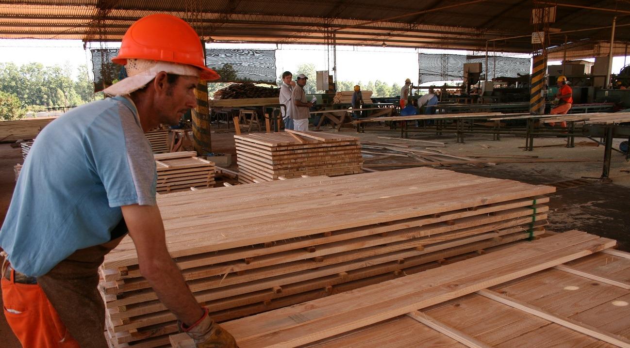 Madereros denunciaron a 13 empresas por despidos, suspensiones y falta de pago de salarios