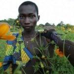 Africa. La ONU logra el alto al fuego en algunos conflictos del continente