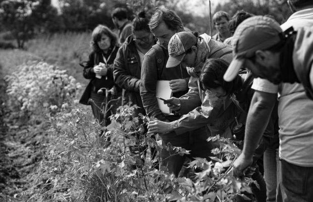 Argentina. De la academia al territorio: educación por una Soberanía Alimentaria