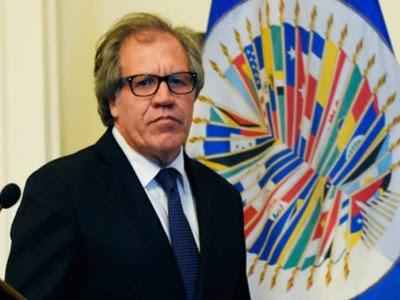 Venezuela. La OEA, Luis Almagro y la Unión Europea