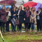 La fosa de Pico Reja podría albergar al doble de víctimas – La otra Andalucía
