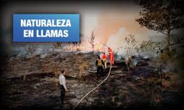 Perú. Madre de Dios: 14 incendios forestales y más de 7 mil focos de calor críticos