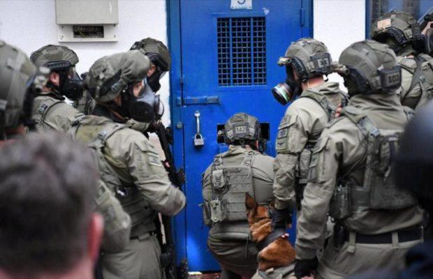 Palestina. Fuerzas israelíes atacan con perros a presos palestinos
