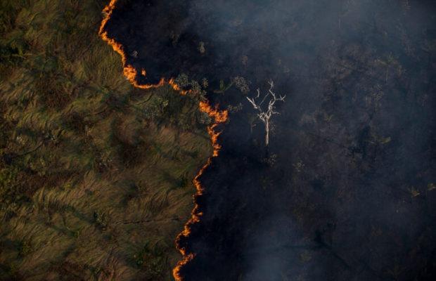 Opinión. Brasil en llamas (Frei Betto)