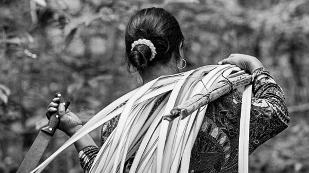 mujer-rural-recolección-productos-forestales.jpg