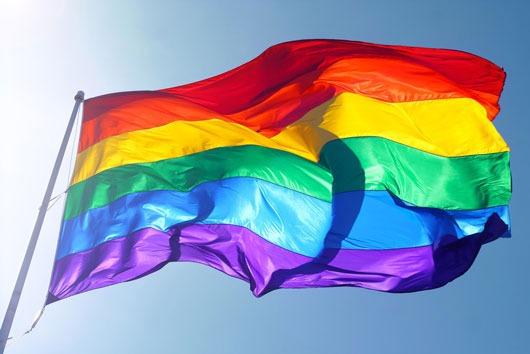 Vox insiste en que los homosexuales acudan a terapia