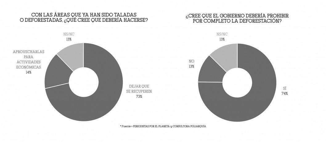 gráfico-encuesta-importancia-desmonte-sociedad-2