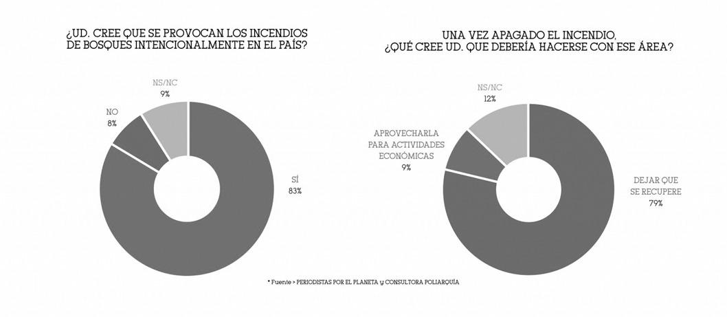 gráfico-encuesta-importancia-incendios-sociedad-1