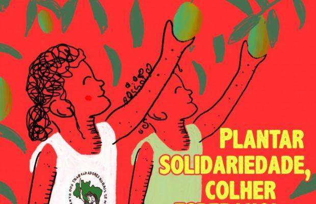 Brasil. MST: sembrando solidaridad y cosechando esperanza para un 2021 de luchas y conquistas para el pueblo