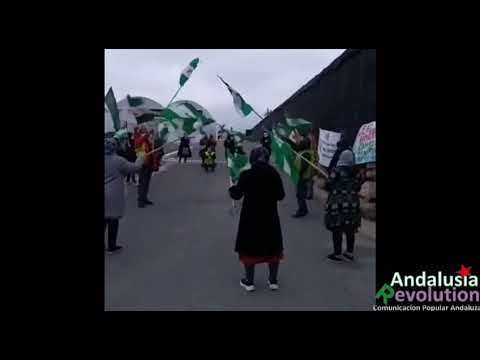 Almería: Las trabajadoras y trabajadores de Fresh Tom Export siguen en huelga (vídeo)