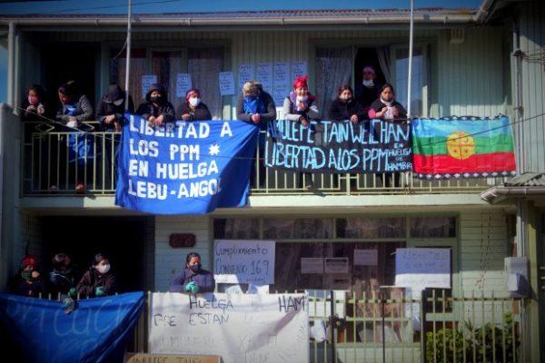 Nación Mapuche. Presos Politicos en Huelga de Hambre. Dia 65