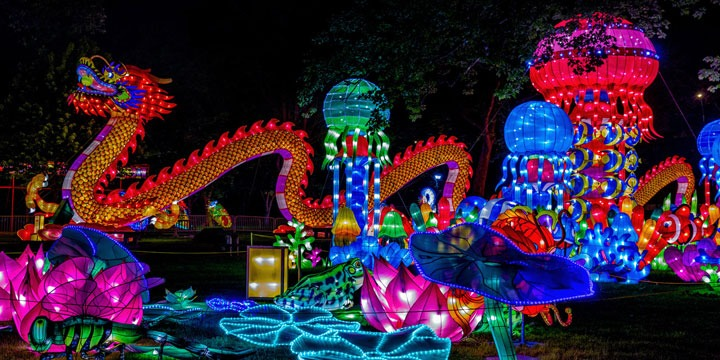 festival de primavera chino espectáculo de dragones
