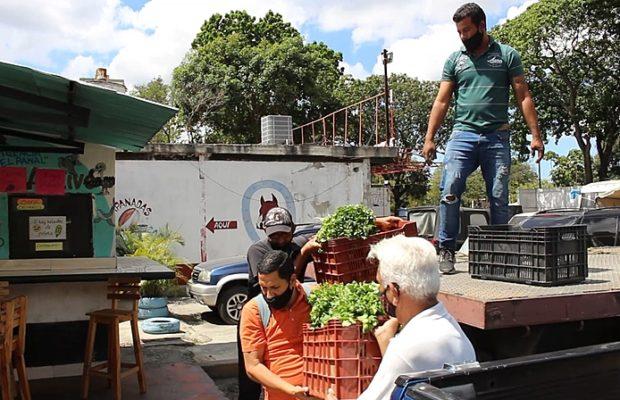 Venezuela. Agroecología para la producción campesina con las comunas urbanas