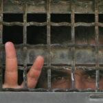 Palestina. Día De lxs Prisionerxs Políticxs: 4.500 presos palestinos en cárceles israelíes, 168 menores y 41 mujeres