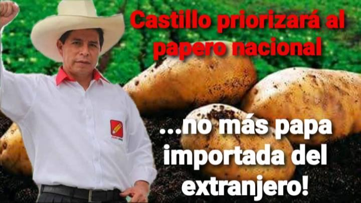 """Puede ser una imagen de 1 persona, de pie y texto que dice """"Castillo priorizará al papero nacional ...no más papa importada del extranjero!"""""""