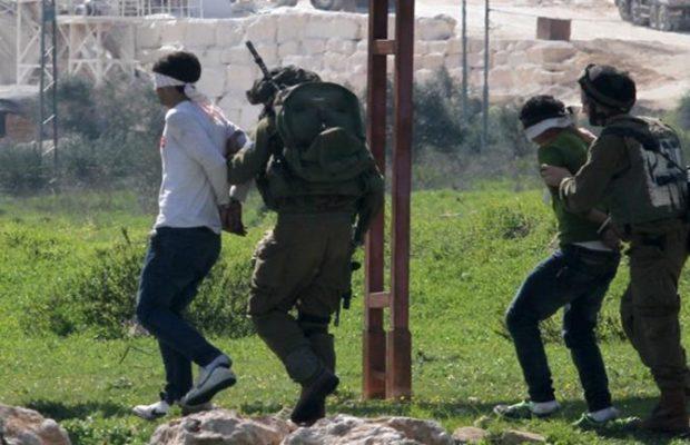 Palestina. Más de 680 palestinos heridos y 13 asesinados en junio