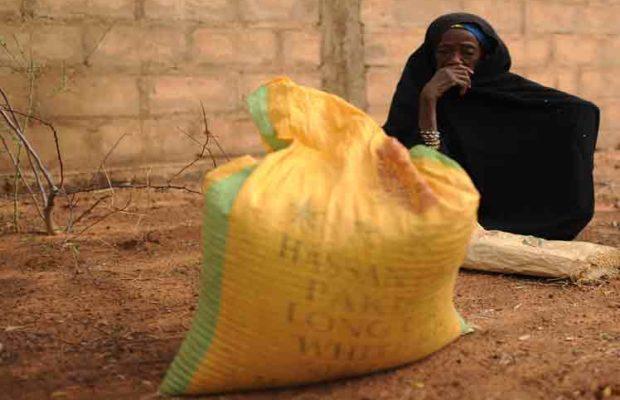 Níger. Requieren ayuda humanitaria 3,8 millones de civiles
