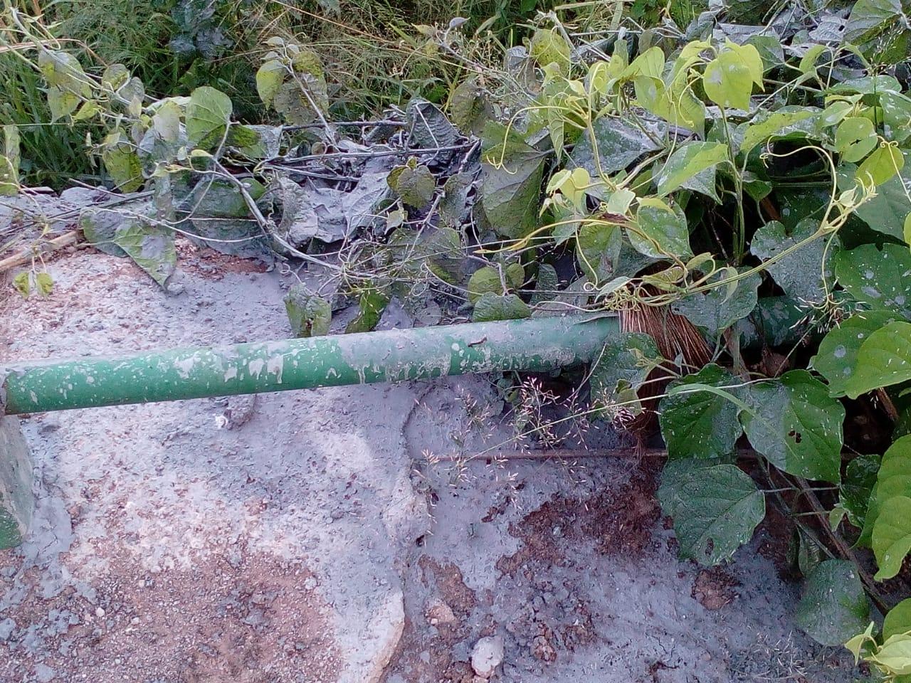 Este es el terreno en donde las comunidades denuncian que personal de Albán tiró las aguas grises del Restaurante Las Palmeras. El daño ambiental se registró el 13 de agosto de 2020. Foto: cortesía.