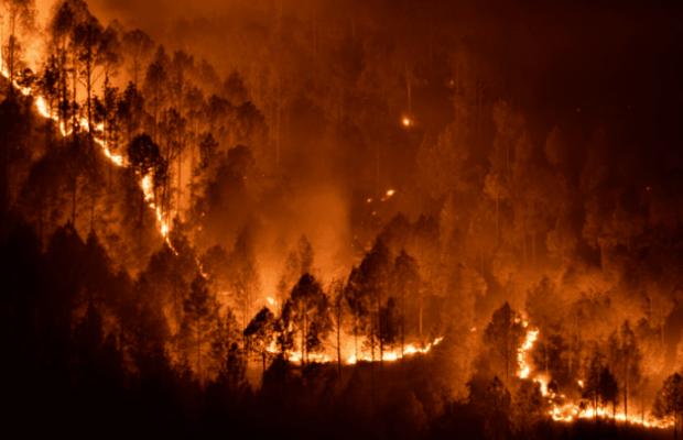 Estados Unidos. Crisis climática: Continúan avanzando incendios en el oeste