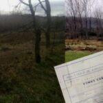 Nación Mapuche. Comunidad Tomas Cañicul denunció fraudulento apropiamiento de sus tierras por particulares a través de engaños