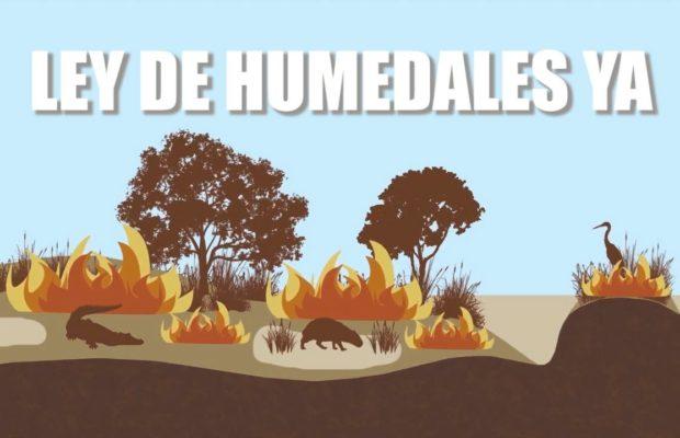 Argentina. Anuncian travesía naútica exigiendo Ley de Humedales