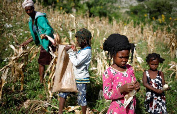 Haití. El blanco que no es: color e identidad