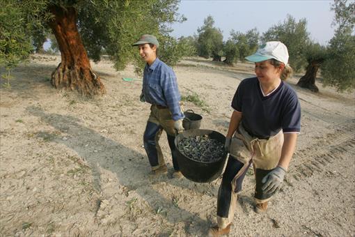 62 trabajadores muertos en el tajo en Andalucía solo en el primer semestre de 2021