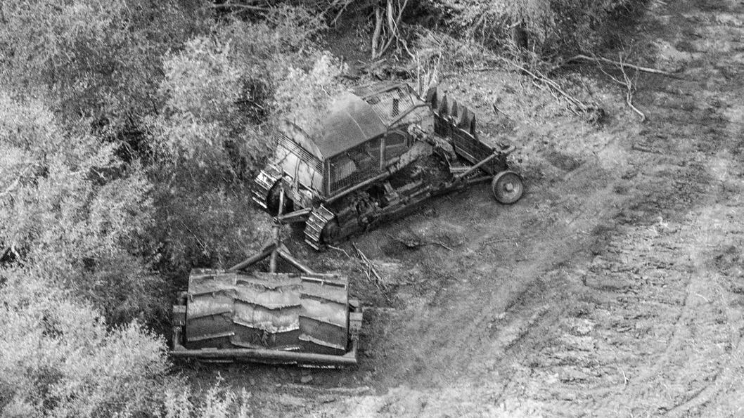 chaco-desmonte-bosque-7