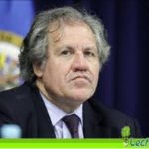 OEA.  Luis Almagro, el candidato de Pompeo
