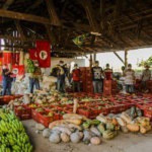 Brasil. MST dona 14 toneladas de alimentos a ocupaciones urbanas en Curitiba