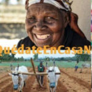 #17Abril2020- ¡Labrar, sembrar y cosechar ideas transformadoras por Derechos! ¡Ahora es el momento de exigir Soberanía Alimentaria!