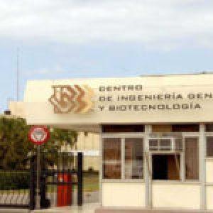 Cuba. En fase de prueba vacuna cubana que fortalece la inmunidad innata