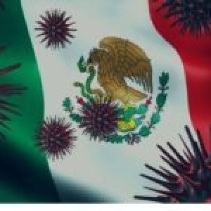 México. La pandemia y los derechos sociales