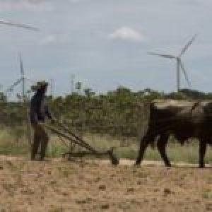 Brasil. PT: Alarma por expansión de Covid-19 a zonas rurales