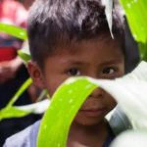 México. «Sembramos para cosechar sueños, esperanzas y realidades»