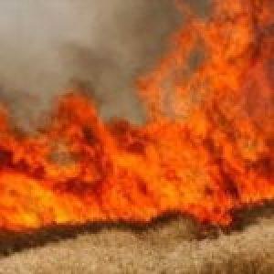 Siria. Helicópteros de EEUU queman 20 hectáreas de trigo
