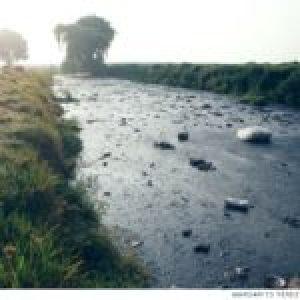 México. 78% de las muertes por Covid-19 se concentra en zonas con mayor impacto ambiental
