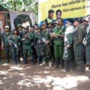 Colombia. Las Farc- Ep anuncian que han recuperado gran parte del territorio nacional