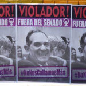 Argentina. Presentan solicitada en el Senado para que Alperovich sea removido de su banca por violador