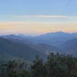 Colombia. Detenciones y torturas a campesinos en el municipio de Pailitas por miembros de la fuerza publica y policía nacional