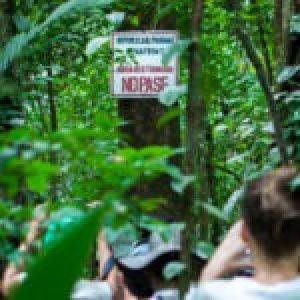 Colombia. A pocos kilómetros de base militar binacional funcionaría una pista del narcotráfico en Chocó