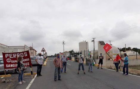El Sindicato Unitario de Andalucía se concentra en la puerta de la envasadora Greenmed (vídeo) – La otra Andalucía