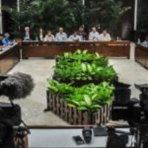 Cuba. Declaración del Ministerio de Relaciones Exteriores: Condena el terrorismo y la manipulación política.