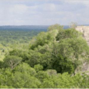 México. Comunidad en la Selva Maya obtiene certificado por conservar la biodiversidad