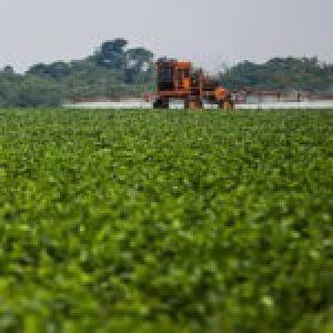 Brasil. Empresas alemanas se enriquecen con la venta de pesticidas prohibidos en Europa