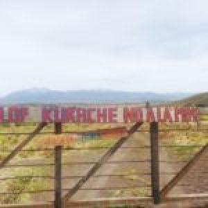 Nación Mapuche.Comunidad  denuncia irrupción de la policía en territorio recuperado