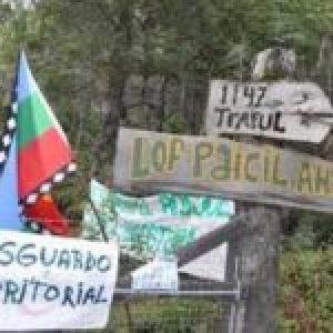 Nación Mapuche. Neuquén: Comunidades Mapuche pidieron al presidente la ejecución del Relevamiento Territorial