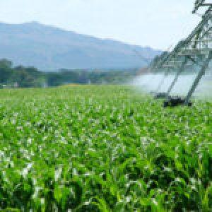 Ecología Social. La agroindustria, dispuesta a poner en riesgo de muerte a millones de personas